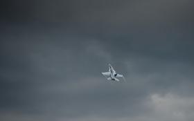 Обои самолёт, авиация, CF 18