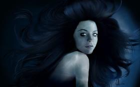 Обои взгляд, девушка, арт, певица, черные волосы, Amy Lee