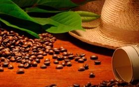 Обои карта, шляпа, мешок, hat, кофейные зерна, листики, leaves