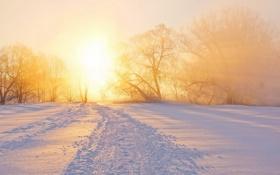 Картинка зима, пейзаж, закат