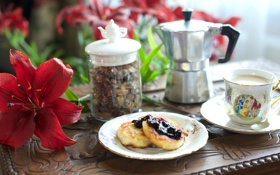 Обои цветок, кофе, лилия, завтрак, джем, изюм, сырники