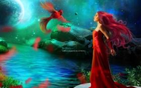 Обои небо, вода, девушка, звезды, цветы, отражение, фантастика
