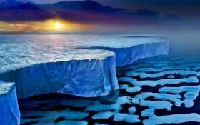 Картинка лед, море, закат, стена, животное, человек, олень