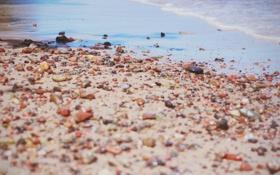 Картинка песок, пляж, галька, камни, разные