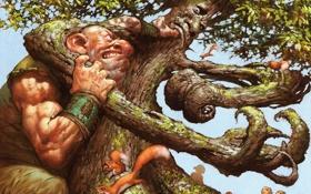 Обои дерево, рисунок, борьба, великан, белки