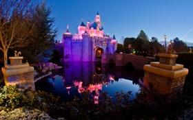 Обои вода, огни, отражение, сказка, подсветка, Замок Спящей Красавицы, Парк Диснейленд