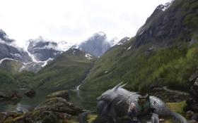 Картинка девушка, горы, природа, озеро, отдых, арт, волки