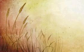 Обои свет, рисунок, точки, Пшеница
