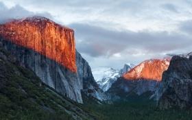 Обои США, лес, Yosemite National Park, скалы, Apple, ущелье, Mac