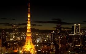 Обои ночь, город, огни, япония, башня, токио