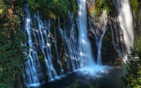 Картинка США, лес, McArthur-Burney Falls, озеро, водопад