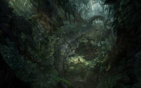 Картинка лес, девушка, дождь, чаща, Tomb Raider, пещера, Underworld