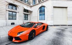 Обои оранжевый, здание, окна, lamborghini, вид сбоку, orange, aventador