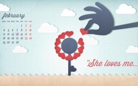 Обои 2013, календарь, february, цветок, любовь, рука, год змеи