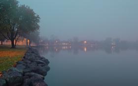 Картинка деревья, огни, туман, озеро, камни, мох, фонари