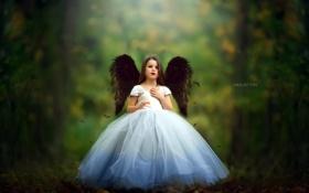 Обои ангел, фон, девочка