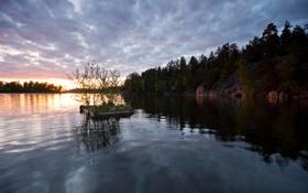 Картинка лес, облака, озеро, рассвет, пристань, березки
