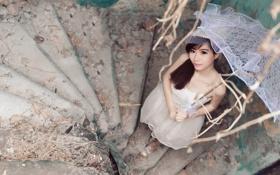Картинка взгляд, девушка, зонт, азиатка