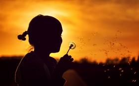 Картинка закат, настроение, одуванчик, девочка