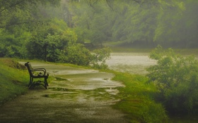 Обои grass, road, river, rain, trees, park, Bench