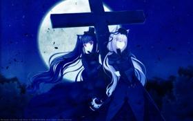Картинка ночь, обои, луна, крест, аниме, Neko Girls, девочки кошки