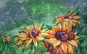 Картинка листья, живопись, лето, природа, бабочки, лепестки, цветы