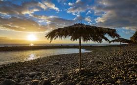 Обои зонты, пляж, закат, море