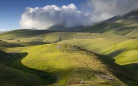 Обои небо, трава, горы, поля, овцы