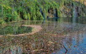 Обои листья, озеро, мох, водопады, Хорватия, Plitvice Lakes