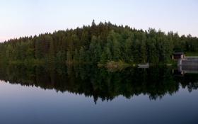 Обои вода, деревья, природа, озеро, река, дерево, пейзажи