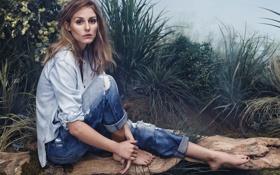 Картинка трава, взгляд, поза, туман, модель, джинсы, рубашка