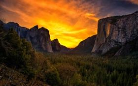 Картинка лес, небо, деревья, горы, скалы, Калифорния, зарево