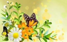 Обои листья, цветы, коллаж, бабочка, букет, лепестки, ромашка