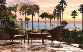 Картинка море, зелень, небо, деревья, цветы, пальмы, стол