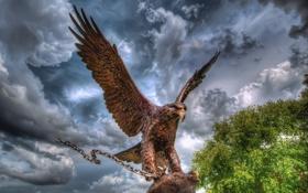Обои скульптура, орёл, небо