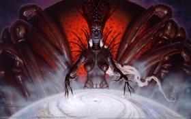Картинка магия, мрак, паутина, паук, колдунья, game wallpapers, D&D