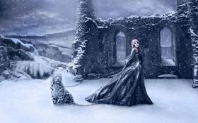 Обои девушка, снег, горы, тучи, цепь, развалены, барс