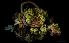 Обои листья, корзина, виноград, грозди