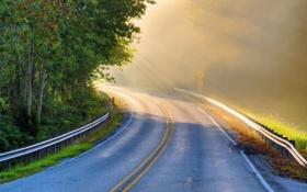 Картинка дорога, свет, пейзаж, утро