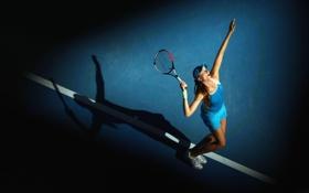 Обои tennis, Daniela Hantuchova, raketka, kort