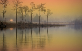 Обои туман, озеро, свет фар