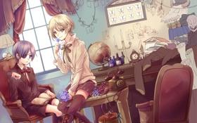 Картинка цветы, комната, бардак, art, темный дворецкий, ciel phantomhive, парени