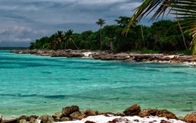 Картинка бухта, пляж, лазурь, карибы, остров, океан, пальмы