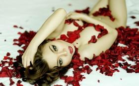 Картинка девушка, поза, лепестки розы
