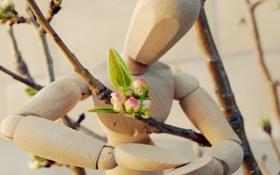 Обои цветок, настроение, романтика, человек, весна, деревянный