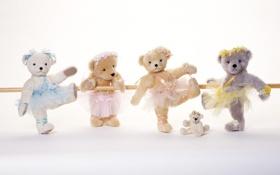 Картинка игра, игрушки, мишки, репетиция