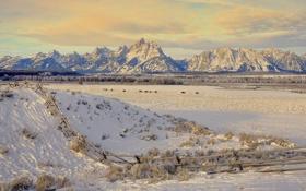 Обои зима, поле, снег, пейзаж, горы, фото, фон