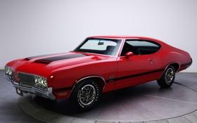 Обои ретро, мускул кар, классика, retro, muscle car, 1970, classic