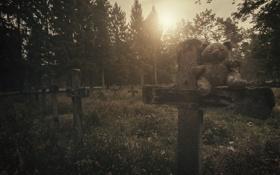 Обои кресты, мишка, кладбище