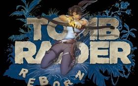 Обои надпись, стрела, Lara Croft, Tomb raider, девушка, лук, волосы